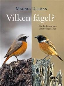 Vilken fågel? :