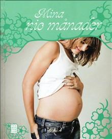 Mina nio månader