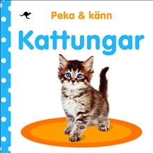 Peka & känn Kattungar