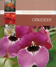 Den perfekta trädgården Orkideer